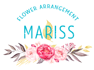 home-mariss-about-logo